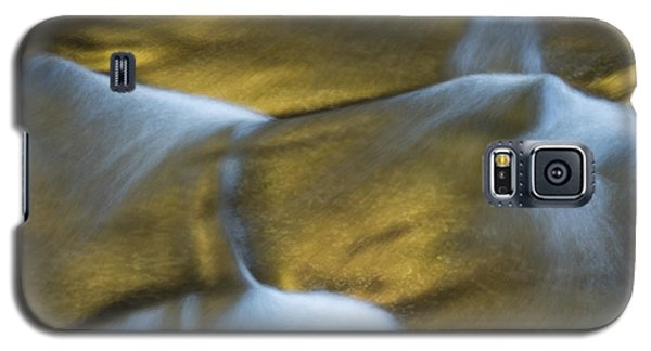 Gold Scales Galaxy S5 Case