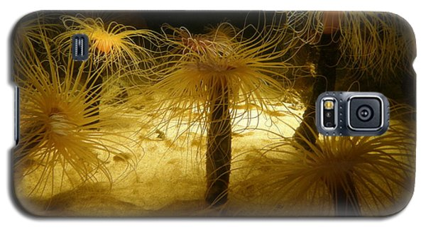 Gold Sea Anemones Galaxy S5 Case