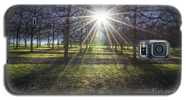 Galaxy S5 Case featuring the photograph Golden Autumn by Bruno Santoro