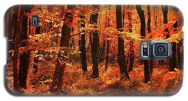 Golden Autumn Forest Galaxy S5 Case