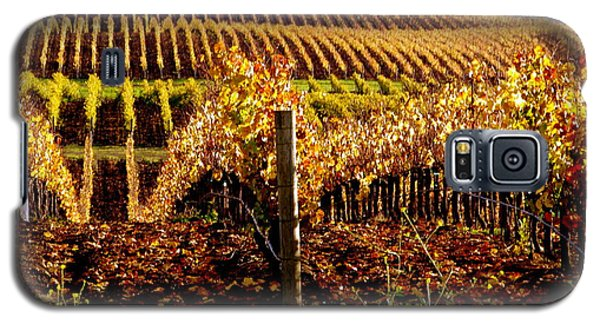 Golden Autumn Vineyard Galaxy S5 Case