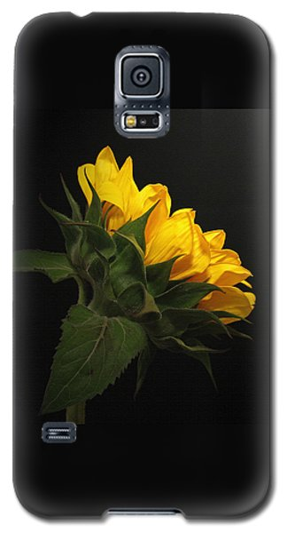 Galaxy S5 Case featuring the photograph Golden Beauty by Judy Vincent