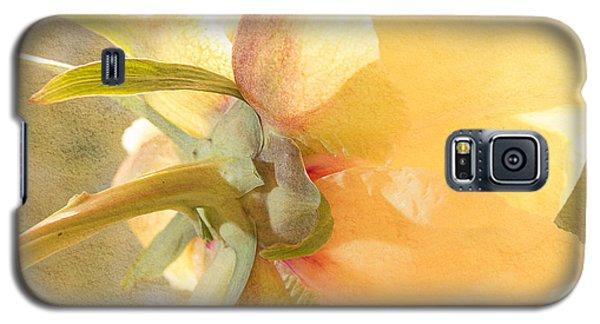 Golden Bowl Tree Peony Bloom - Back Galaxy S5 Case