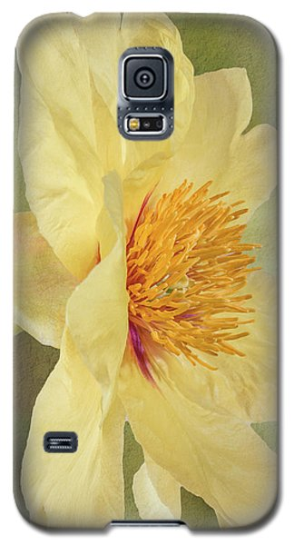 Golden Bowl Tree Peony Bloom - Profile Galaxy S5 Case