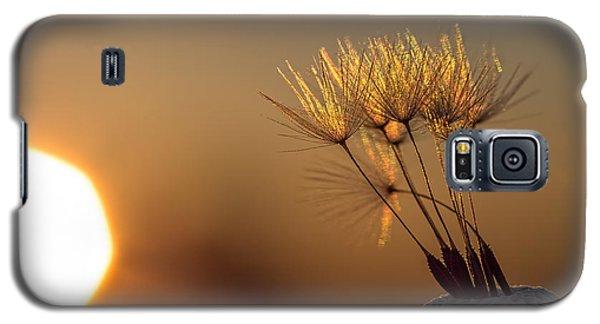 Golden Galaxy S5 Case