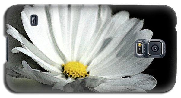 Golden Center Galaxy S5 Case