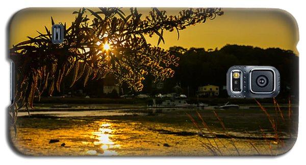 Golden Centerport Galaxy S5 Case