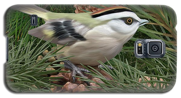 Golden Crowned Kinglet Galaxy S5 Case