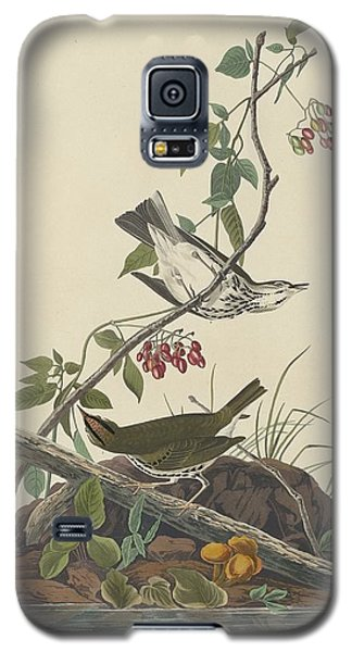 Golden-crowned Thrush Galaxy S5 Case by Rob Dreyer