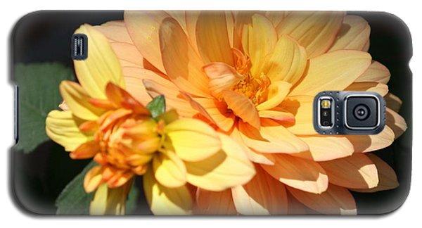Golden Dahlia With Bud Galaxy S5 Case