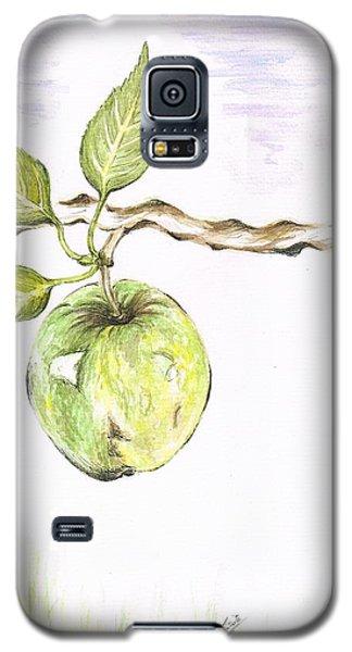 Golden Delishous Apple Galaxy S5 Case by Teresa White