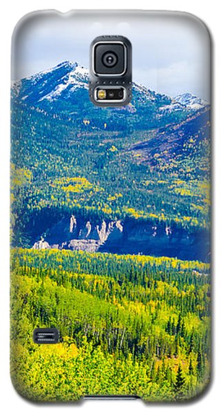 Golden Denali Galaxy S5 Case