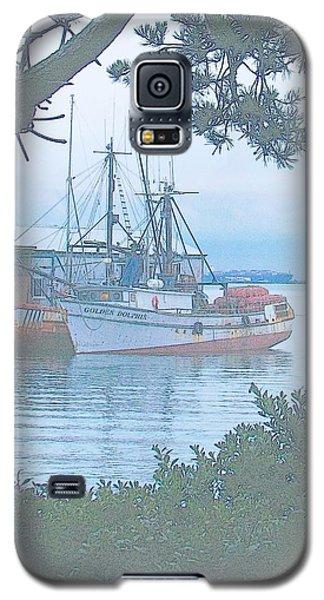 Golden Dolphin Galaxy S5 Case
