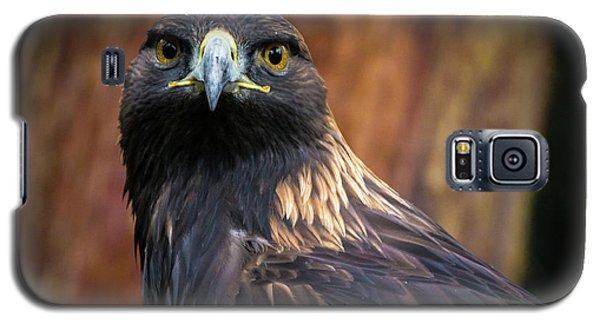 Golden Eagle 1 Galaxy S5 Case