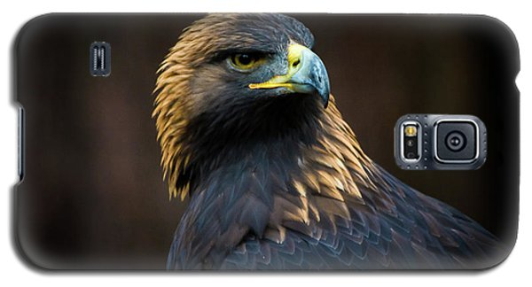 Golden Eagle 3 Galaxy S5 Case