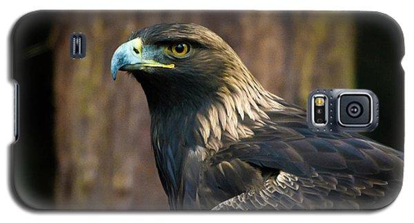 Golden Eagle 5 Galaxy S5 Case