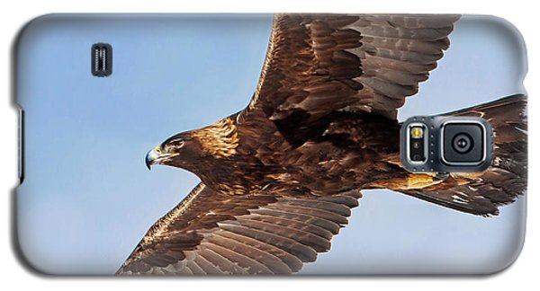 Golden Eagle Flight Galaxy S5 Case