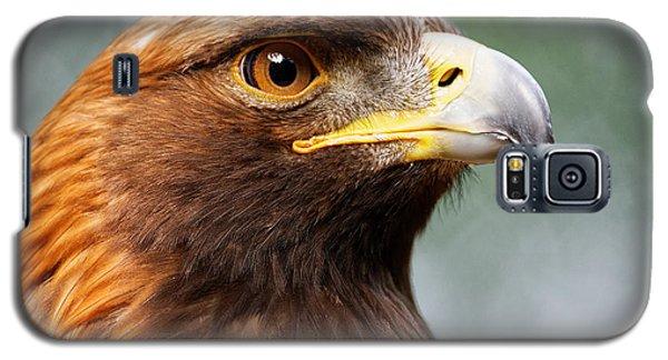 Golden Eagle Intensity Galaxy S5 Case