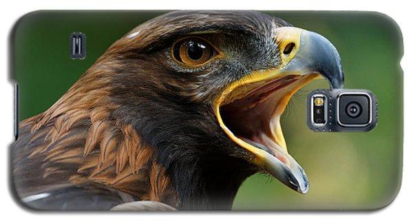 Golden Eagle - Raptor Calling Galaxy S5 Case