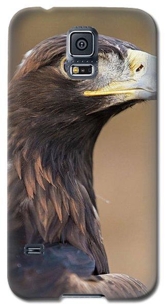 Golden Eagle Galaxy S5 Case