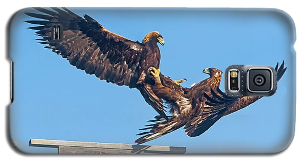 Golden Eagle Courtship Galaxy S5 Case