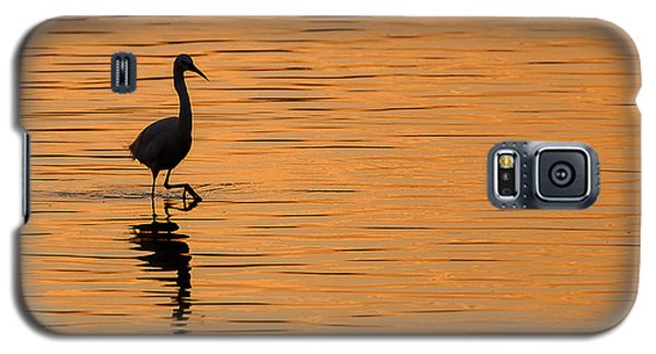 Egret Galaxy S5 Case - Golden Egret by Paul Neville