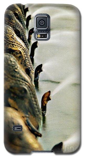 Golden Elephant Fountain Galaxy S5 Case