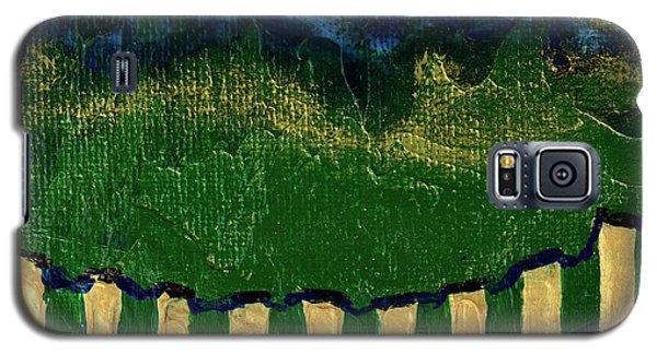 Golden Evening Galaxy S5 Case by Donna Blackhall