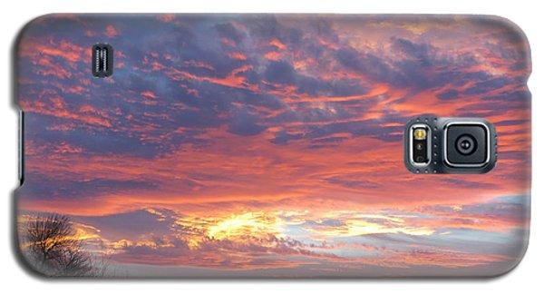 Golden Eye Landing In The Desert Galaxy S5 Case