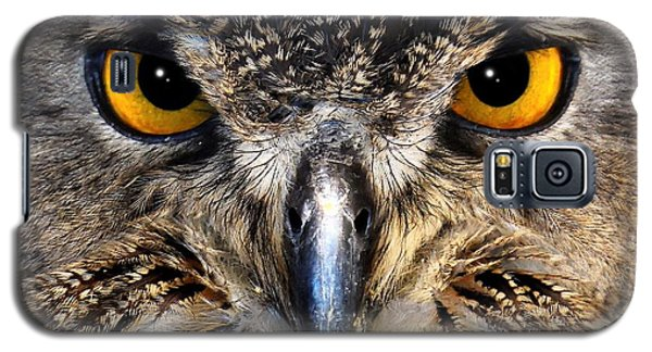Golden Eyes - Great Horned Owl Galaxy S5 Case