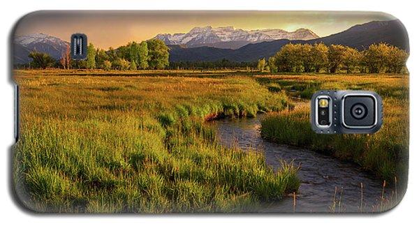 Golden Field In Heber Valley. Galaxy S5 Case