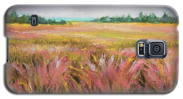 Golden Field Galaxy S5 Case