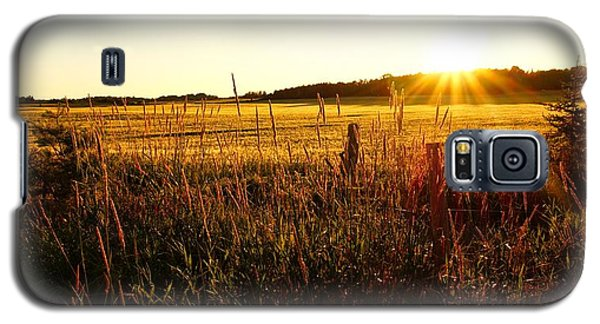 Golden Fields Galaxy S5 Case