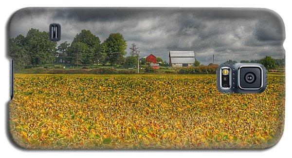 0012 - Golden Fields Farm Galaxy S5 Case