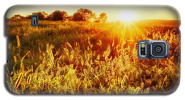 Galaxy S5 Case featuring the photograph Golden Fields by Mark Miller