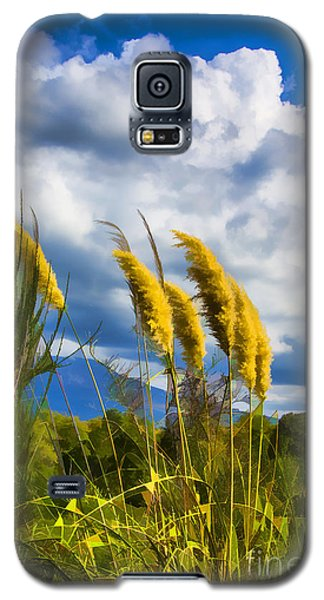 Galaxy S5 Case featuring the photograph Golden Fluff by Rick Bragan