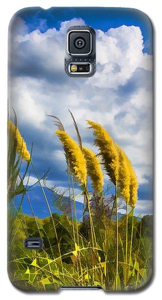 Golden Fluff Galaxy S5 Case by Rick Bragan