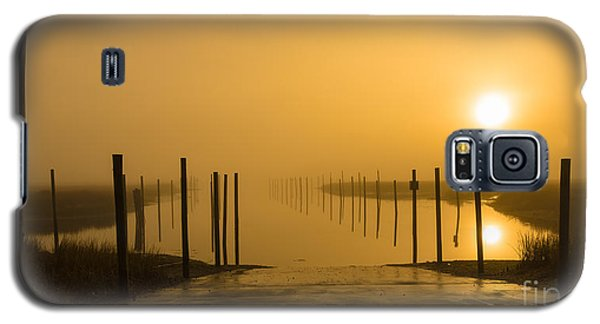 Golden Fog On The Nissequogue Galaxy S5 Case