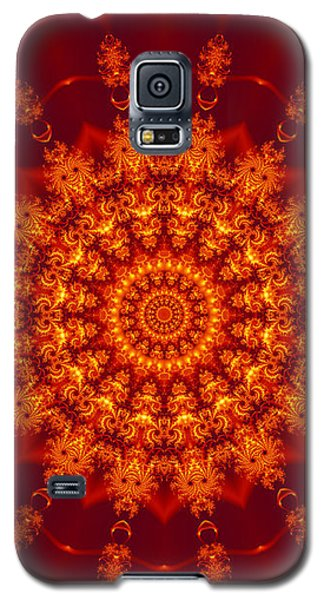 Golden Fractal Mandala Daisy Galaxy S5 Case