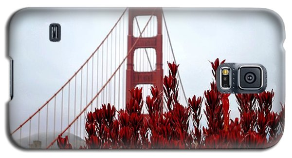 Golden Gate Bridge Red Flowers Galaxy S5 Case