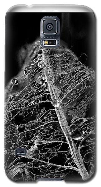 Golden Globules  Galaxy S5 Case