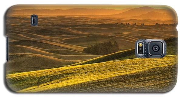 Golden Grains Galaxy S5 Case