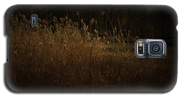 Galaxy S5 Case featuring the photograph Golden Grass by Ryan Photography