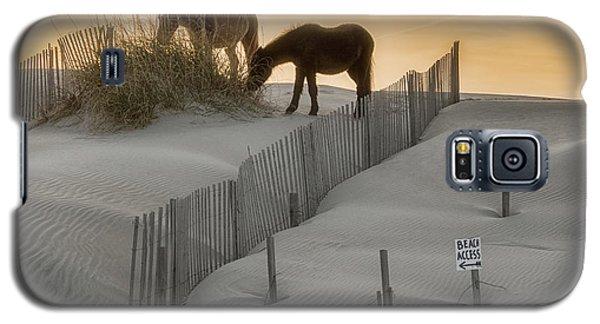 Golden Horses Galaxy S5 Case