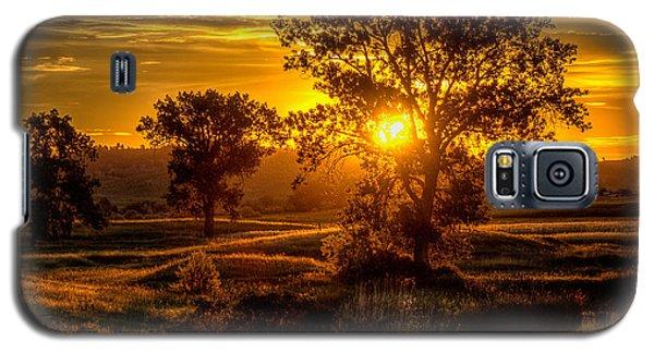 Golden Hour Galaxy S5 Case