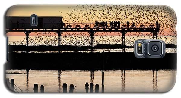 Golden Hour Starlings In Aberystwyth Galaxy S5 Case