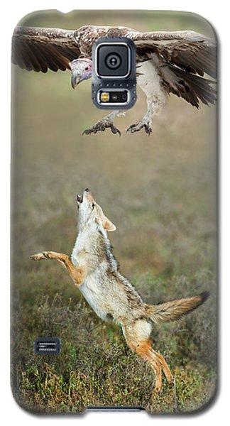 Golden Jackal, Canis Aureus, Leaping At Vulture Galaxy S5 Case