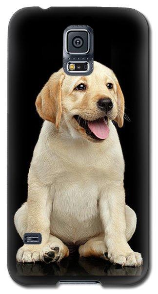 Golden Labrador Retriever Puppy Isolated On Black Background Galaxy S5 Case