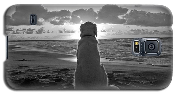 Golden Labrador Watching Sunset Galaxy S5 Case by Sumit Mehndiratta