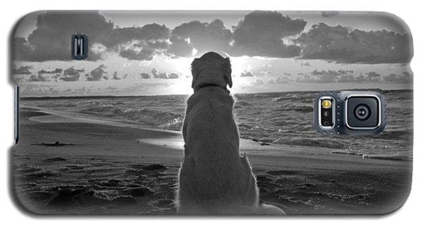 Golden Labrador Watching Sunset Galaxy S5 Case